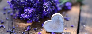 1409753533_wood-heart-on-lavender_facebk